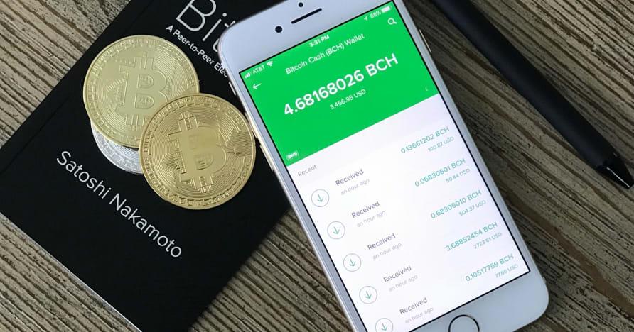 Guida introduttiva ai casinò mobili Bitcoin